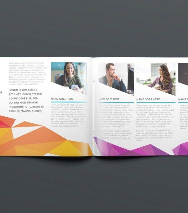 Bold Brochure