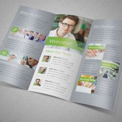 Great Ideas Trifold Brochure