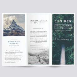 Morelli Trifold Brochure