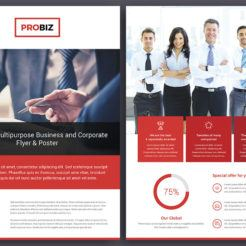 ProBiz Double Sided Flyer from Digital Dreams