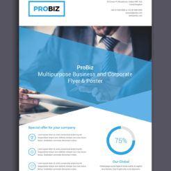 ProBiz Flyer by Digital Dreams