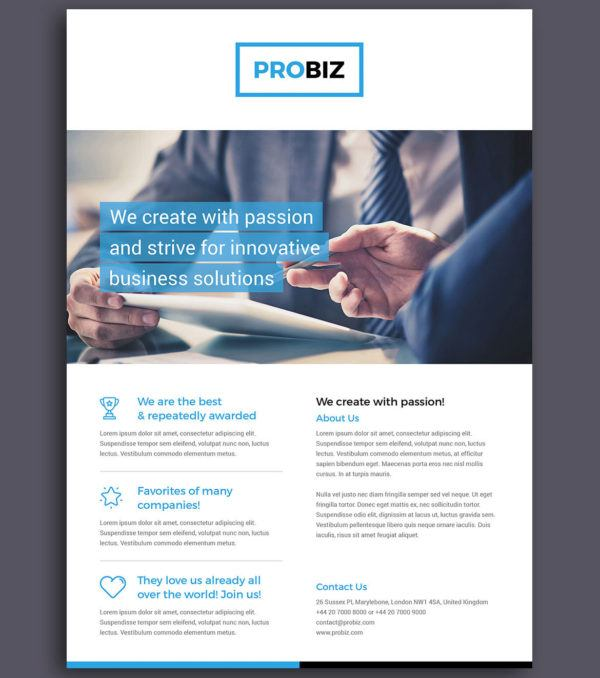 ProBiz Flyer by Digital Dreams