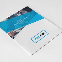 ProBiz Stationary Kit from Digital Dreams