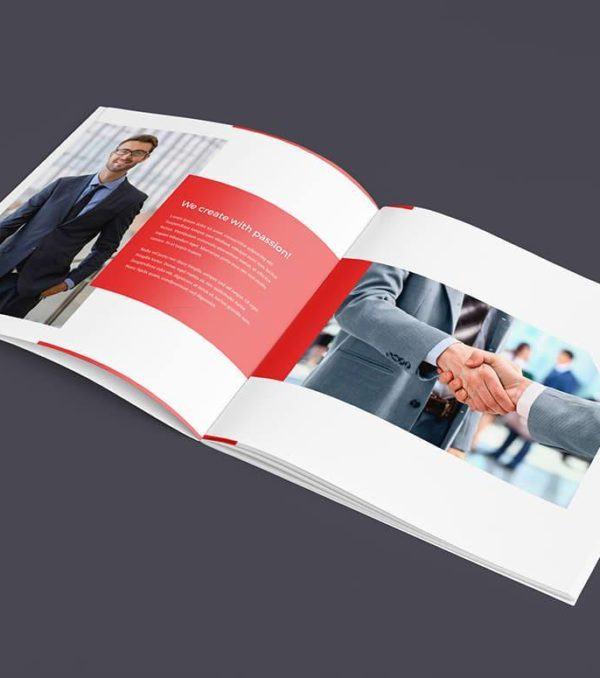 Digital Dreams ProBiz Bifold Brochure