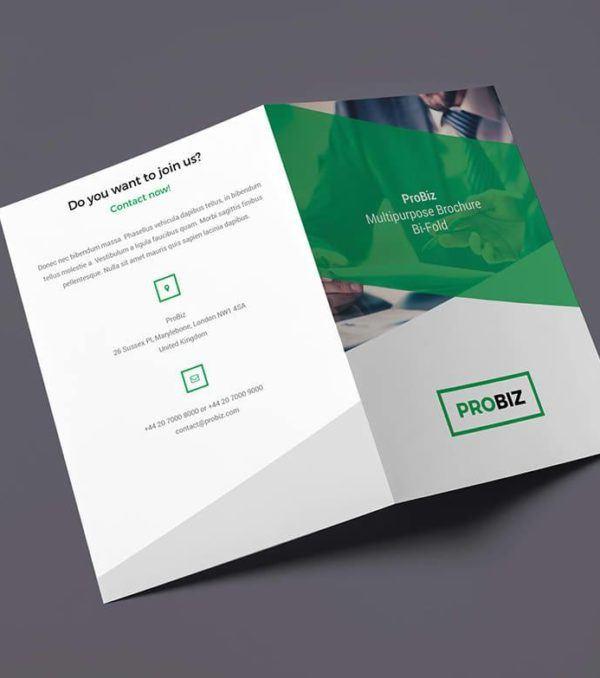 ProBiz Bifold Brochure